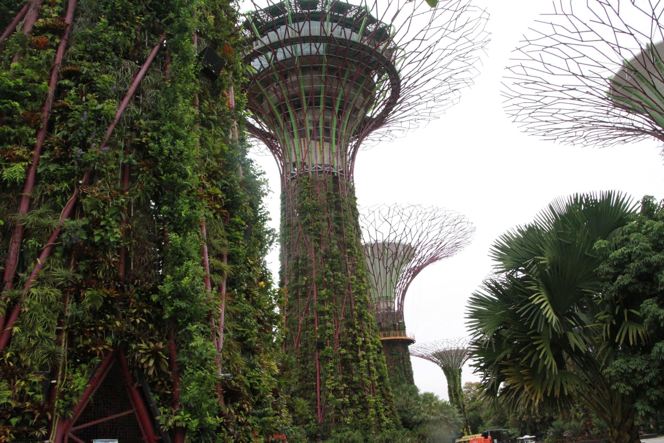 Gemeinsam reisen Singapur